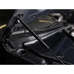 Haubendämpfer Nissan GT-R R35 Carbon Look