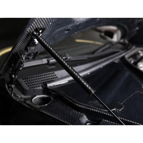 Carbon Haubendämpfer Nissan Skyline R35
