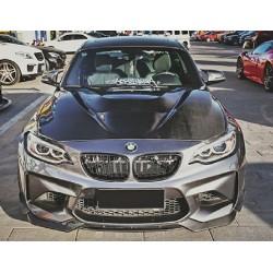GTS Carbon Motorhaube BMW M2 F87 inkl. DTC