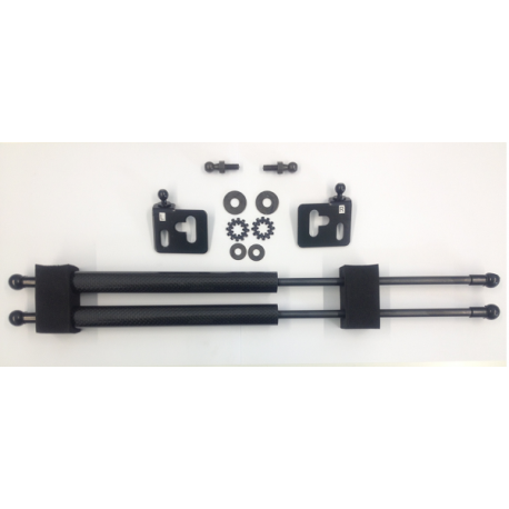 Carbon Haubendämpfer Subaru Forester 05