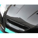 Carbon Sportgrill H2 Hyundai Genesis ab 2009-