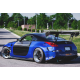 Carbon Türen Nissan 350Z