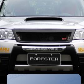 Frontschutzbügel Aluminiumoptik Forester 09-