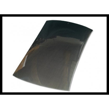 Carbon Dach EVO 8-9